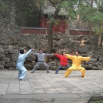 Stili di vita tai chi Martial_arts_-_Fragrant_Hills